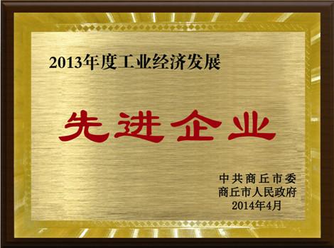 2013年經(jing)濟發展先進企(qi)業(ye)