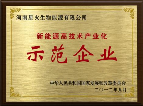 新能源(yuan)高技術示範企(qi)業(ye)
