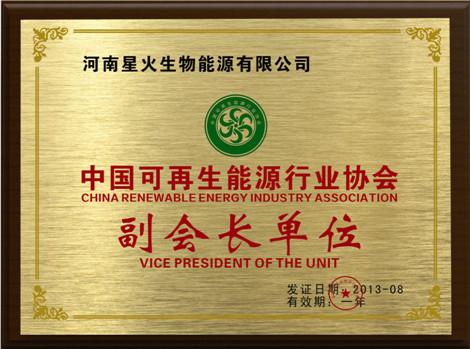 中國可再生能源(yuan)副(fu)會長單位